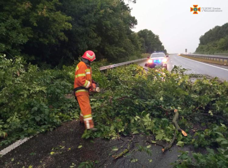 Повалені дерева на Черкащині - 20 липня 2021